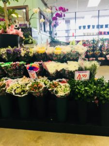 A huge selection of plants and flowers at the Giant Farmers Market in Waldwick, NJ!